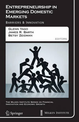 Entrepreneurship in Emerging Domestic Markets: Barriers and Innovation - The Milken Institute Series on Financial Innovation and Economic Growth 7 (Hardback)
