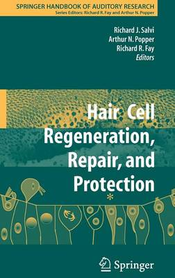 Hair Cell Regeneration, Repair, and Protection - Springer Handbook of Auditory Research 33 (Hardback)