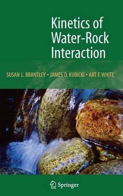 Kinetics of Water-Rock Interaction (Hardback)