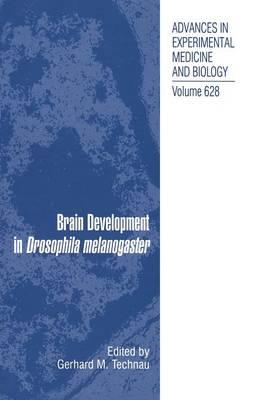 Brain Development in Drosophila melanogaster - Advances in Experimental Medicine and Biology 628 (Hardback)
