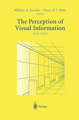 The Perception of Visual Information (Hardback)