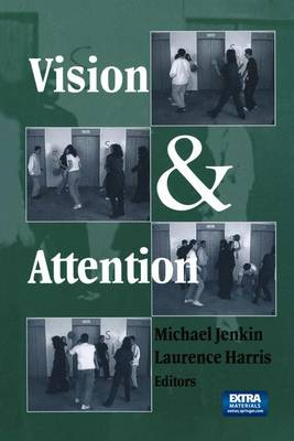 Vision and Attention (Hardback)
