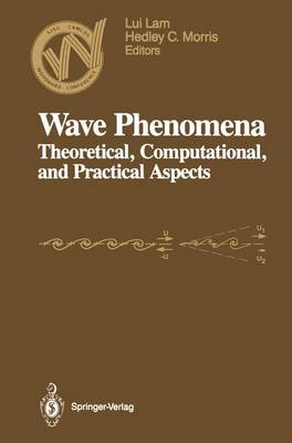 Wave Phenomena: Theoretical, Computational, and Practical Aspects : 1st Woodward Conference : Papers (Hardback)