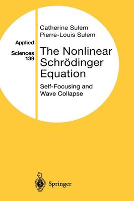 The Nonlinear Schroedinger Equation: Self-Focusing and Wave Collapse - Applied Mathematical Sciences 139 (Hardback)