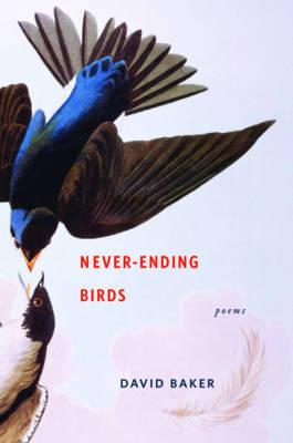 Never-Ending Birds: Poems (Hardback)