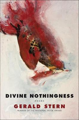 Divine Nothingness: Poems (Hardback)