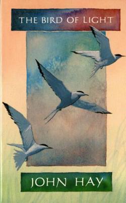 The Bird of Light (Paperback)