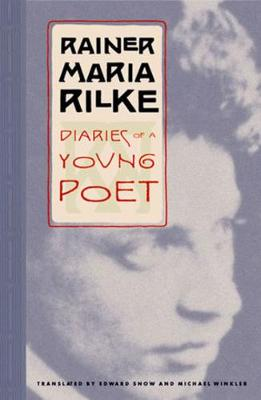 Diaries of a Young Poet (Paperback)