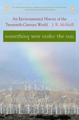 Something New Under the Sun: An Environmental History of the Twentieth-Century World - The Global Century Series (Paperback)