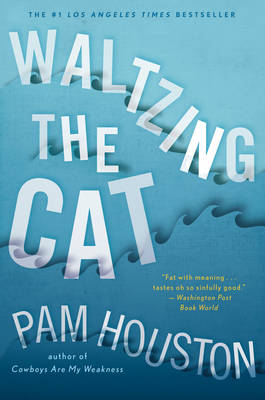 Waltzing the Cat (Paperback)