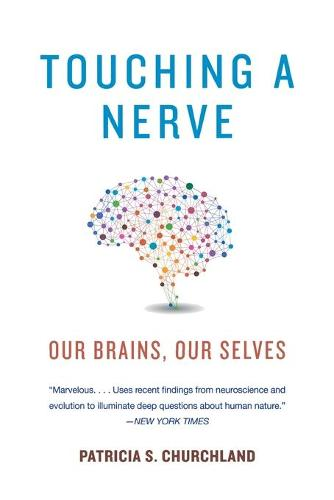 Touching a Nerve: Our Brains, Our Selves (Paperback)