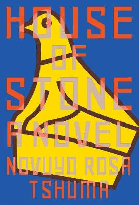 House of Stone: A Novel (Hardback)
