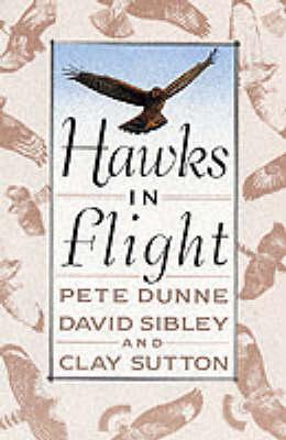 Hawks in Flight: The Flight Identification of North American Migrant Raptors (Paperback)