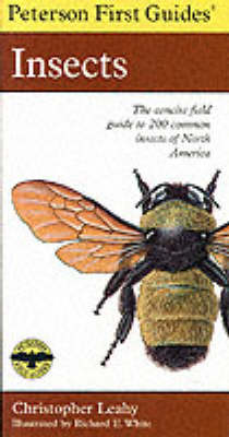 First Guide to Insects - Peterson First Guides (Paperback)