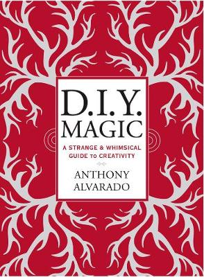 Diy Magic: A Strange and Whimsical Guide to Creativity (Paperback)