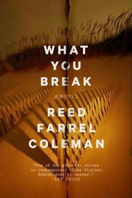 What You Break: A Novel (Hardback)