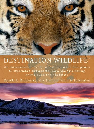 Destination Wildlife: An International Site-by-Side Guide to the Best Places to Experience Endangered, Rare, and Fascinating Animals... (Paperback)