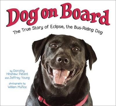 Dog On Board (Hardback)