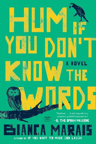 Hum If You Don't Know The Words (Paperback)