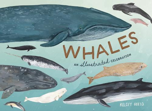 Whales: An Illustrated Celebration (Hardback)