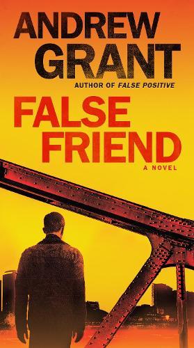 False Friend (Paperback)