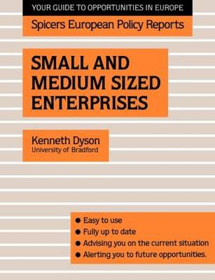 Small and Medium Sized Enterprises (Paperback)