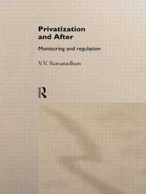 Privatization and After: Monitoring and Regulation (Hardback)