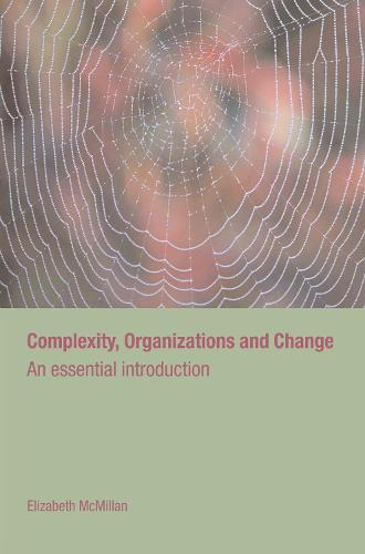 Complexity, Organizations and Change - Routledge Studies in Complexity and Management (Hardback)