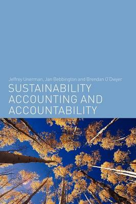 Sustainability Accounting and Accountability (Paperback)
