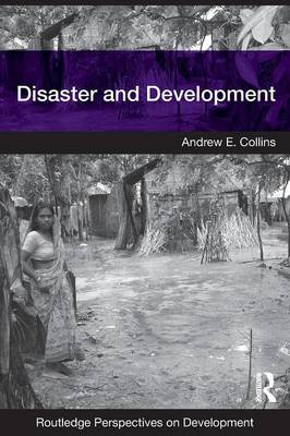 Disaster and Development - Routledge Perspectives on Development (Paperback)