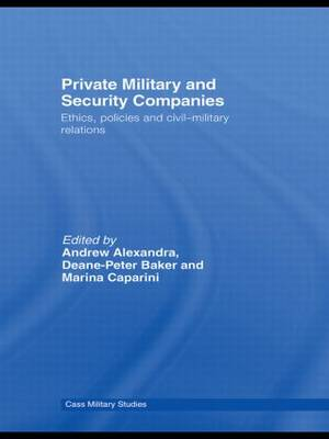 private military and security companies essay
