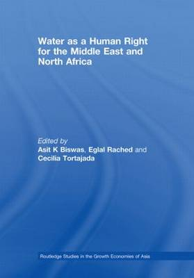 Water as a Human Right for the Middle East and North Africa - Routledge Special Issues on Water Policy and Governance (Hardback)