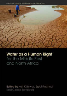 Water as a Human Right for the Middle East and North Africa - Routledge Special Issues on Water Policy and Governance (Paperback)
