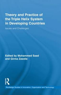 Theory and Practice of the Triple Helix Model in Developing Countries: Issues and Challenges - Routledge Studies in Innovation, Organizations and Technology (Hardback)