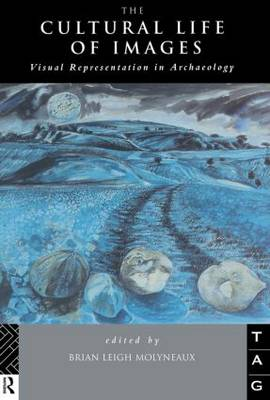 The Cultural Life of Images: Visual Representation in Archaeology (Paperback)