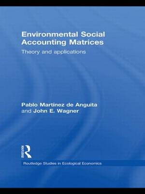 Environmental Social Accounting Matrices: Theory and applications (Paperback)