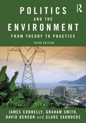 Politics and the Environment: From Theory to Practice (Paperback)