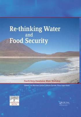 Re-thinking Water and Food Security: Fourth Botin Foundation Water Workshop (Hardback)
