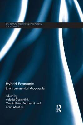 Hybrid Economic-Environmental Accounts - Routledge Studies in Ecological Economics 17 (Hardback)