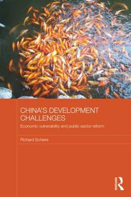 China's Development Challenges: Economic Vulnerability and Public Sector Reform (Paperback)