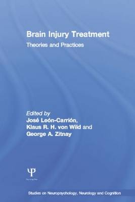 Brain Injury Treatment: Theories and Practices - Studies on Neuropsychology, Neurology and Cognition (Paperback)