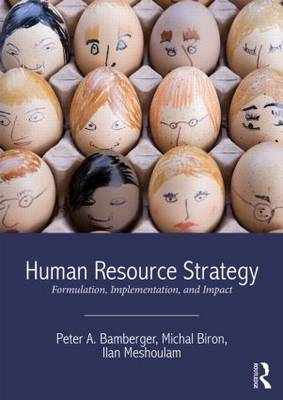 Human Resource Strategy: Formulation, Implementation, and Impact (Paperback)