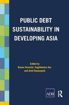 Public Debt Sustainability in Developing Asia (Paperback)