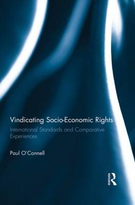 Vindicating Socio-Economic Rights: International Standards and Comparative Experiences (Paperback)