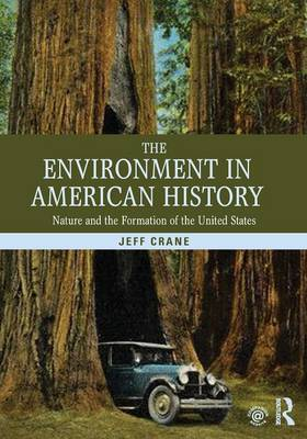 The Environment in American History: Nature and the Formation of the United States (Paperback)