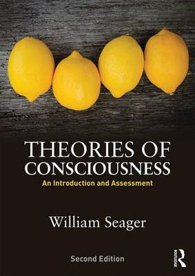 Theories of Consciousness: An Introduction and Assessment (Paperback)