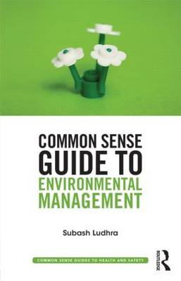 Common Sense Guide to Environmental Management - Common Sense Guides to Health and Safety (Paperback)