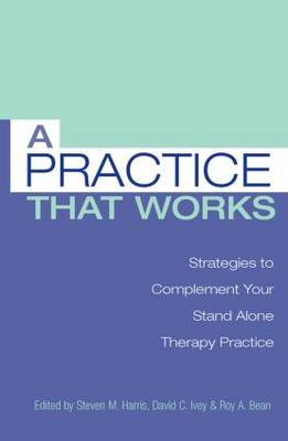 A Practice that Works: Strategies to Complement Your Stand Alone Therapy Practice (Paperback)
