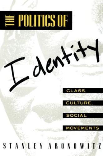 The Politics of Identity: Class, Culture, Social Movements (Paperback)