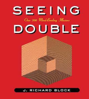 Seeing Double (Paperback)